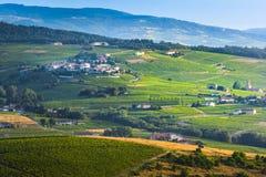 Типичная деревня земли божоле с его виноградниками вокруг, Франция Стоковое Фото