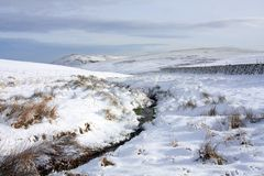 типичная зима взгляда стоковое фото rf