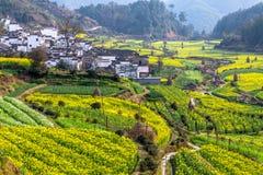 Типичная китайская деревня на юге  фарфора Стоковая Фотография RF