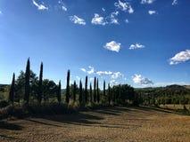 Типичная проселочная дорога в Тоскане выровнялась с кипарисами Стоковое Изображение