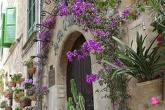 Типичная среднеземноморская деревня с цветочными горшками в фасадах в Val Стоковые Изображения RF