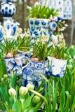 Типичная сцена Нидерландов: Голландский фарфор mugs с белыми тюльпанами и другие цветки в Keukenhof садовничают стоковые фото