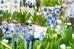 Типичная сцена Нидерландов: Голландский фарфор mugs с белыми тюльпанами и другие цветки в Keukenhof садовничают стоковая фотография rf