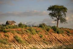 Эфиопская хата стоковое фото