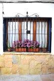 Типичное запертое окно с цветками в Испании Стоковые Изображения