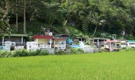 Типичное кладбище в острове Bohol, Филиппинах Кладбище в Филиппинах Взгляд к кладбищу в Азии Азиатское кладбище Жизнь и смерть Стоковые Фотографии RF