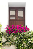 Типичное окно украсило розовые и белые цветки, Cordoba, Испанию стоковые изображения