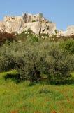 Типичные ландшафты Les-Baux-de-Провансали стоковое фото rf