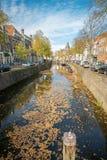 Типичный голландский канал города в гауда, Нидерланд с деревьями в цветах осени и листьями плавая на поверхность воды стоковые фотографии rf