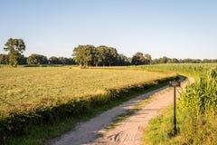 Типичный голландский ландшафт лета в июле около Delden Twente, Оверэйсела Стоковое Фото