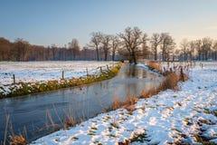 Типичный голландский ландшафт зимы в январе около Delden Twente, Оверэйсела Стоковые Изображения