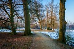 Типичный голландский ландшафт зимы в январе около Delden Twente, Оверэйсела Стоковая Фотография RF