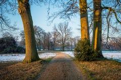 Типичный голландский ландшафт зимы в январе около Delden Twente, Оверэйсела Стоковые Фото