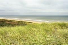 Типичный голландский прибрежный ландшафт с морем, пляжем, волнами, горизонтом, травой marram Стоковые Изображения RF