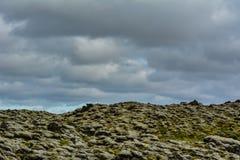 Типичный исландский ландшафт при камни лавы предусматриванные к зеленый mo Стоковые Изображения