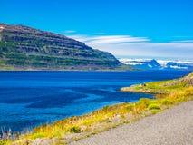 Типичный исландский ландшафт с небольшим домом Стоковая Фотография RF