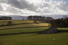 Типичный каменный амбар в национальном парке участков земли Yorks осветил солнечним светом Стоковые Фото