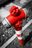 Типичный красный жидкостный огнетушитель Стоковое Изображение RF