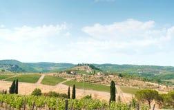 Типичный ландшафт Toskana: виноградники, оливковые дерева и малая деревня с старым замком на горизонте Стоковое Изображение