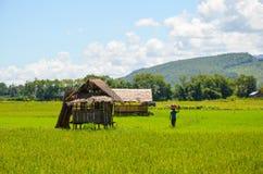 Типичный сельский ландшафт в Мьянме с традиционными бамбуковыми хатами и голубым глубоким небом стоковое фото