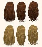 Типы 1 волос Стоковое Фото