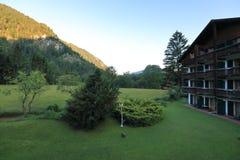 Типы завораживающего, больш-формата зеленых лугов, края и древесины высокогорные предгорья в летнем времени стоковые фото