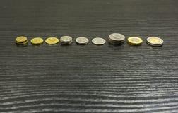Типы монеток - польского злотого Стоковая Фотография RF