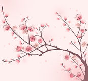тип весны картины вишни цветения востоковедный иллюстрация вектора