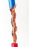 тип европейской державы кабеля 220v электрический Стоковая Фотография