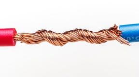 тип европейской державы кабеля 220v электрический Стоковые Фото
