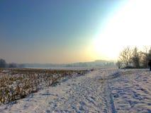 Тип зимы Стоковые Изображения