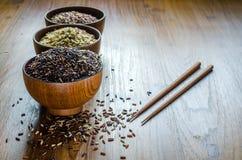 тип коричневого риса Стоковое фото RF