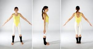 тип листа тела Стоковые Изображения RF