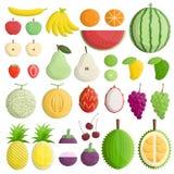 Тип плодоовощ симметрии куска внутренности цвета половинный Стоковое Фото
