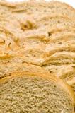 тип рожи лука хлебца хлеба еврейский Стоковые Фото