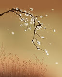 тип сливы картины цветения востоковедный иллюстрация вектора