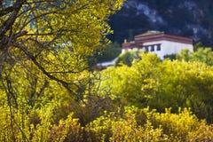 тип Тибет дома предпосылки Стоковые Изображения