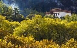 тип Тибет дома Стоковое Изображение RF