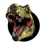 Тиранозавр динозавра головной Стоковое фото RF