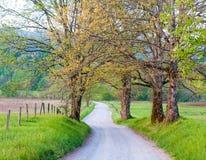 Тихая дорога в smokeys Стоковое Изображение