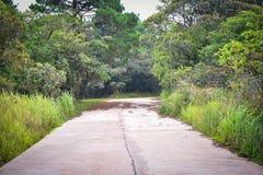 Тихая конкретная дорога Стоковые Изображения RF