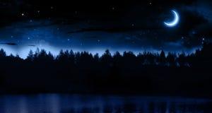 Тихая ноча лета Стоковые Изображения RF