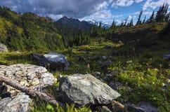 Тихая океан северо-западная пешая предпосылка гор ландшафта Стоковое Фото
