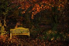 Тихая осень Стоковая Фотография RF