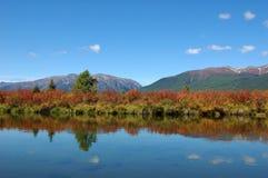 Тихая часть реки горы Стоковые Фото
