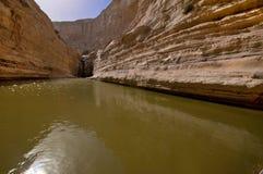 Тихие воды Стоковая Фотография