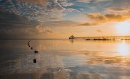 Тихий восход солнца пляжем стоковое изображение rf