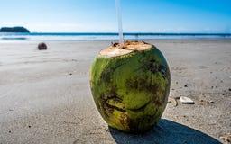 Тихий океан зеленого цвета Pura Vida каникул пляжа Коста-Рика кокоса Стоковые Фото
