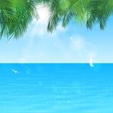 Тихий океан рай бесплатная иллюстрация