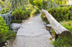 Тихий след парка в японском саде Стоковые Изображения RF